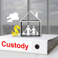 A book about child custody
